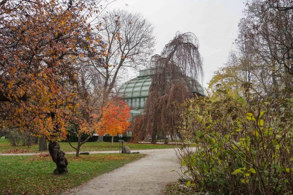 Palmenhaus Schönbrunn im Herbst