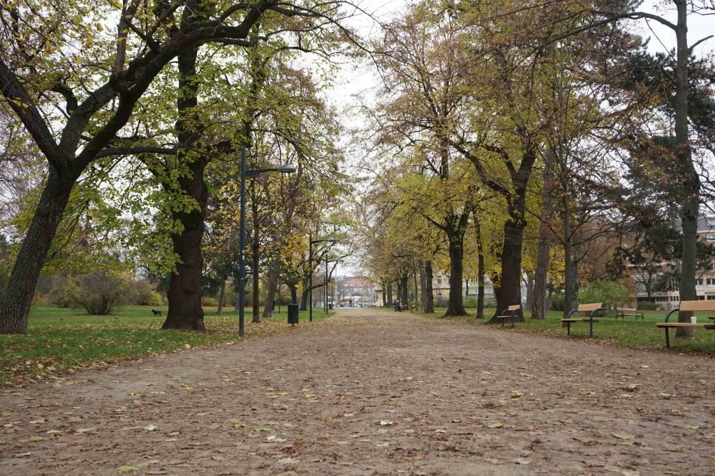 Auer Weisbach Park