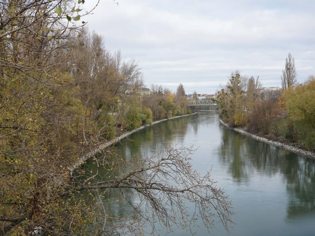 Rossauer Brücke Coffeewalk Donaukanal