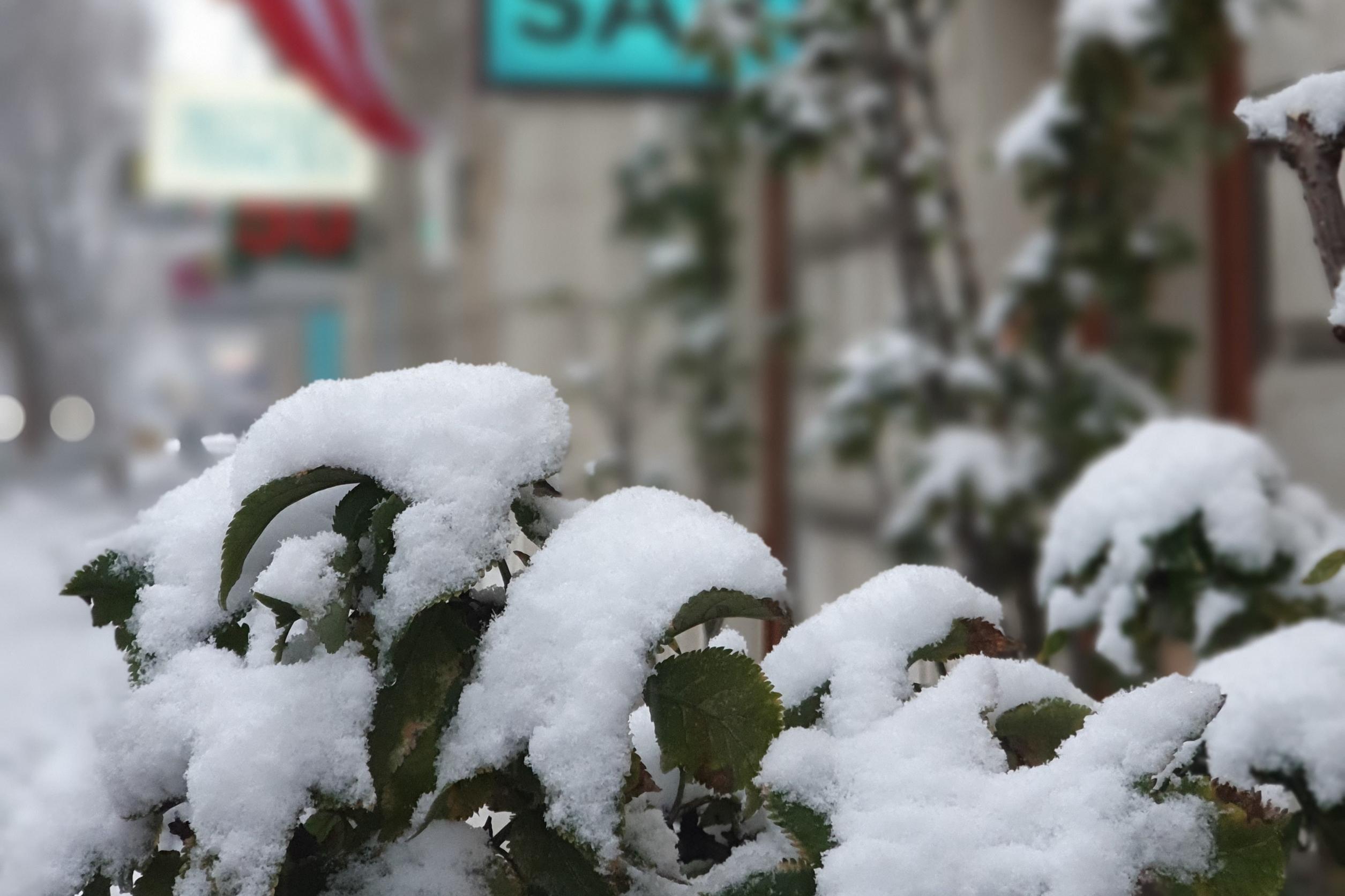 Dinge die man beim ersten Schnee machen kann